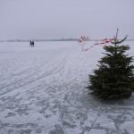 Markeret vej til Egholm over isen